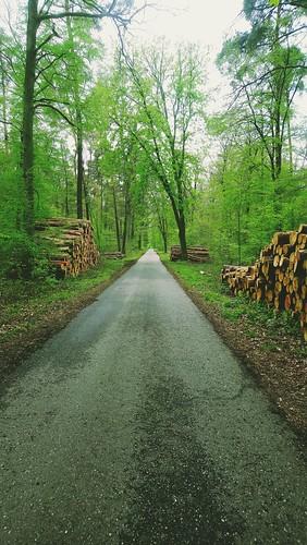 Road ©  dmytrok