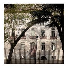 Fence (ngbrx) Tags: lisbon portugal lissabon lisboa fence zaun bäume trees house haus city stadt