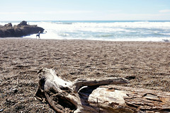 Moonstone Beach (█ Slices of Light █▀ ▀ ▀) Tags: moonstone beach driftwood drift logs pacific ocean coast san luis obispo county cambria near simeon california 加州 加利福尼亞 californie カリフォルニア kalifornien pch highway1 pacificcoasthighway usa america 美国 estados unidos アメリカ合衆国 vereinigte staaten sony rx1rm2 rx1r ii