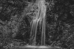 Waterfall in B&W (matej.zavec) Tags: waterfall water blackandwhite nature rock river cascade travel flow park outdoor natural forest beautiful fall landscape stream flowing canyon mountain cliff background scenic bridge wilderness fresh geologic black green creek white solitude national tree rapids stone lake wild plant long beauty scenery environment view motion abyss mineral cascading
