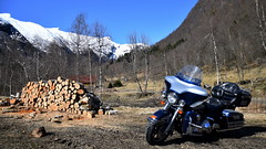 Sign of spring (storeknut) Tags: harley ultraclassic harleydavidson