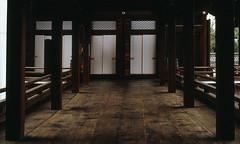In the temple (lebre.jaime) Tags: japan kyoto temple buddhism buddhist interior floor fusuma 襖 hasselblad 503cx planar cf2880 film120 positive slide mediumformat mf kodak ektachrome ektachrome100xprofessional epp epson v600 affinity affinityphoto