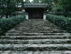 The gate (lebre.jaime) Tags: japan kyoto temple buddhism buddhist gate stairs stairway hasselblad 503cx planar cf2880 film120 positive slide mediumformat mf kodak ektachrome ektachrome100xprofessional epp epson v600 affinity affinityphoto