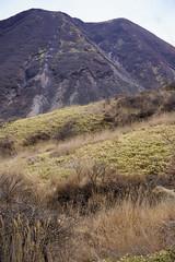 20190416a73_7142 (Gansan00) Tags: ilce7m3 α7ⅲ sony japan 大分 oita 日本 九重連峰 登山 landscape snaps ブラリ旅 04月 fe24105f4 trekking travelphotography