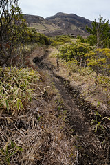 20190416a73_7126 (Gansan00) Tags: ilce7m3 α7ⅲ sony japan 大分 oita 日本 九重連峰 登山 landscape snaps ブラリ旅 04月 fe24105f4 trekking travelphotography