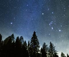 Star peace (Robyn Hooz) Tags: stelle orione costellazione inverno primavera soul emozioni amore dark sky me cadore sigh
