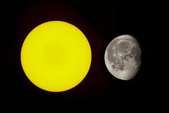The Sun and the Moon (ruifo) Tags: nikon d850 nikkor afs 200500mm f56e ed vr sun sol mexico city ciuadad méxico abril april 2019 astro astrophotography astrofotografia astrofotografía circle yeallow amarillo amarelo sunspot solar activity atividade actividad 2738 cho natureza naturaleza nature circulo círculo round sphere esfera weather star estrella estrela moon lua luna composite