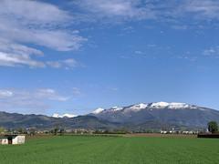 (Paolo Cozzarizza) Tags: italia lombardia bergamo bonatesotto panorama erba alberi piante