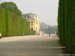 Schönbrunni kastély (MullerAdam_hu) Tags: