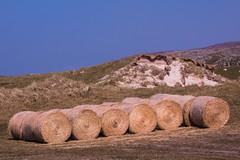 Bales, Isle of Barra (Briantc) Tags: scottishborders westernisles barra isleofbarra bales