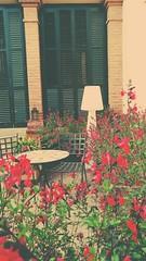 Vintage. (ldomenech33) Tags: plantas plants flowers flores terraza sillas chairs mesa table naturaleza nature