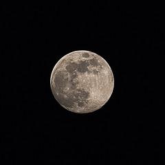 Full moon tonight (Vdh_Cliff) Tags: moon fullmoon astronomy canon70d canonbelgium captureone