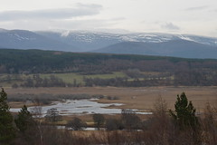 Snow Sprinkled Mountains (CoasterMadMatt) Tags: highlandwildlifepark2018 highlandwildlifepark highland wildlifepark wildlife park zoo zoos zoologicalgardens animalparks animalpark animal parks scottishzoos zoosinscotland enclosure enclosures animalenclosures animals exhibit exhibits view views viewpoint landscape naturallandscape countryside rural mountain mountains hill hills lake lakes snow snowyscene snowscene scene kingussie kineussie invernessshire scottishhighlands scottish highlands scotland alba britain greatbritain unitedkingdom gb uk europe december2018 autumn2018 december autumn 2018 coastermadmattphotography coastermadmatt photos photographs photography nikond3200