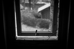 Window (Mattias Lindgren) Tags: 50mmf14 sweden nikond600 bw mood