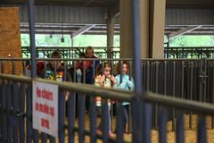 Faulkner-Co-Ag-Roundup_0213 (uacescomm) Tags: universityofarkansassystemdivisionofagriculture faulkner county agricultural roundup animals kids learning