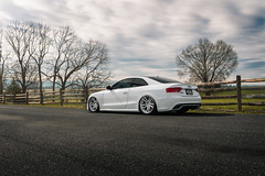BC FORGED AUDI RS5 3 (Arlen Liverman) Tags: exotic maryland automotivephotographer automotivephotography aml amlphotographscom car vehicle sports sony a7 a7iii audi rs5 nature country bc forged bcforged bagged