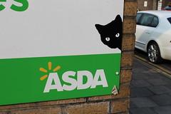 Cat goes to ASDA (doojohn701) Tags: graffiti advertising car road sign green cat black white yellow lines animal pet walmart asda building bexleyheath uk