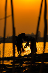 Faded Times (ZorbaWong) Tags: sunset shadow light sea park girl japan tokyo story