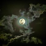Pink Moon thumbnail