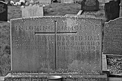 Walkington Church and Cemetery Monochrome (brianarchie65) Tags: allhallowschurch walkington beverley b1230 grave flowers geotagged brianarchie65 headstones brokenheadstones canoneos600d grass trees graves wargraves commonwealthwargraves