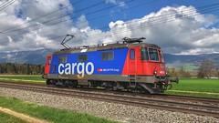 Re 420 310 (Die_Eisenbahn) Tags: sbb sbbcargo sbbc lokzug re420 re420310 deitingen zug train schweiz switzerland