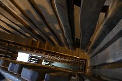 Treppenhaus (aivlisb) Tags: gondwanaland zooleipzig treppe architektur