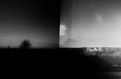 grief. (jonathancastellino) Tags: abstract film expired xp2 lomo lca lomography landscape smoke tree ngc