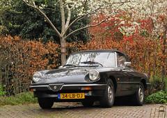1985 Alfa Romeo Spider 2.0 (rvandermaar) Tags: 1985 alfa romeo spider 20 alfaromeospider alfaromeo alfaspider sidecode6 34lbdj