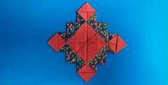Froebel Variation (georigami) Tags: origami papiroflexia papel paper
