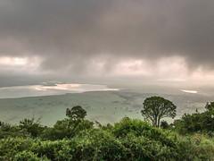 Ngorongoro (Robert Styppa) Tags: tanzania nikon nikond850 robertstyppa africa wildlife serengeti ngorongoro