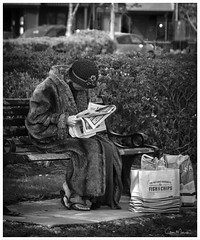 Captivating News (clive_metcalfe) Tags: lady woman furcoat reading newspaper sitting bench seat poole dorset uk hedgerow bags blackwhite monochrome