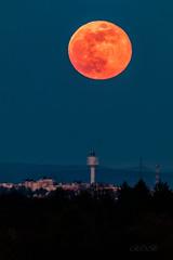 Nightsky-Mond-28391-20190419.jpg (CitizenOfSeoul) Tags: asberg mondfotografie astrophotography himmel moonrise licht kreisludwigsburg rosamond abendstimmung mond mondaufgang astrofotografie pinkmoon erdtrabant lunar badenwürttemberg