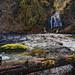Alder Glen Falls, Nestucca Wild and Scenic River