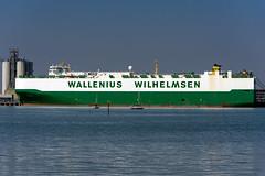 MV Faust, Southampton, Hampshire, UK (rmk2112rmk) Tags: mvfaust southampton wallenius wilhelmsen carcarrier cargo ship boat freighter vessel