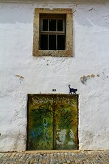 le chat de Faro (JP13009) Tags: chat cat porte fenêtre blanc window door portugal algarve faro streetart