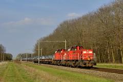 2017 100465  NL (Maarten van der Velden) Tags: nederland netherlands niederlande paysbas paísesbajos paesibassi maasbracht