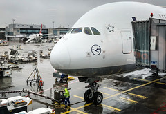 Lufthansa Airbus A380 - FRA Airport Frankfurt Germany (mbell1975) Tags: frankfurt hesse germany lufthansa airbus a380 fra airport lughawe lufthavn flughafen aeropuerto aéroport aeroport aeroporto vliegveld lufthamn havaalani aerodrom flygplats deutschland german jet passenger plane airplane lh jumbo widebody