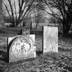Janetville Presbyterian Cemetery, Ontario (Richard Wintle) Tags: cemetery grave gravestone headstone tombstone graveyard presbyterian pioneer janetville kawarthalakes ontario canada bw monochrome blackandwhite squareformat square 6x6 mf mediumformat zeissikon nettar 51516 novaranastigmat panf 50 ilford film rollfilm adox rodinal