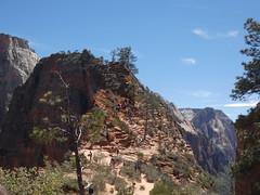 P1000518 (odetojoy24) Tags: zion utah angels landing hiking