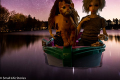 Rowing home2.jpg (small_life_stories) Tags: 3dstorytelling night dollphotography doll photographicnovel benny graphicnovel toyphotography toyadventure balljointdoll photonovel miniatureadventure dolladventure bjd iplehouse pets photostory toy miniature cats miniaturephotography