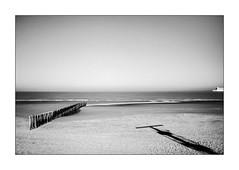 Du lac savourons les rapides délices. (Scubaba) Tags: europe france pasdecalais noirblanc noiretblanc bw blackwhite mer sea ombres shadows