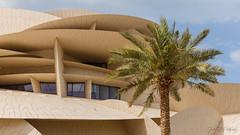 IMG_9689 (simon tull) Tags: doha qatar