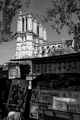 Still standing (E. B. Sylvester) Tags: ebsylvester notredame notre dame paris france beauty old lady still standing marvel bw