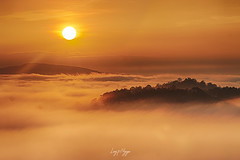 A sea of fog in early morning (longtnguyen) Tags: centralvietnam dalat vietnam cloud fog foggy forest grass green highland hill landscape mist mountain nature scenery sunrise travel tree
