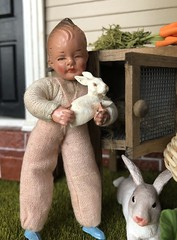 Bunnies! (Foxy Belle) Tags: dollhouse doll 112 outside yard grass caco dolls rabbits miniature pets easter spring boys twins vintage early brick siding door steps foundation rabbit bunny white pet