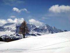 Pralongià (fcentur71) Tags: italia it altoadige val badia corvara dolomiti neve