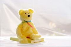When I grow up ...... (Elisafox22) Tags: elisafox22 sony ilca77m2 100mmf28 macro macrolens telemacro lens yellowonwhite hsos smileonsaturday hcc clichesaturday yellow teddybear notebook white cloth sunshine tabletop stilllife indoors elisaliddell©2019