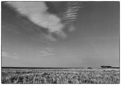 Skallerup (K.Pihl) Tags: olympusom1 yellowfilter pellicolaanalogica landscape darkroom print nature zuiko28mmf28 monochrome blackwhite schwarzweiss bw hc110b film analog