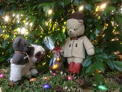Paddington and the Easter Egg Hunt 5. (raaen99) Tags: paddington paddingtonbear paddybear paddy teddy teddybear bear softtoy vintage vintageteddy vintageteddybear vintagetoy handmade softie plush cute cuddly soft scout scoutbear cuddle hug littlebearhug biglittlebearhug knitting knitted knittedtoy fairtrade fairtradebear scouthouse easter easteregg easterfood eastereggs eggs chocolateegg chocolateeggs foil easterchocolateeggs chocolateeasteregg chocolateeastereggs haighschocolate haighschocolateeasteregg haighseasteregg easterbilby easterduck confectionery chocolate chocolates sweetmeats sweetmeat garden grass lawn leaves plants eastersunday easteregghunt easter2019 pâques happyeaster joyeusespâques froheostern ostern pasen vrolijkpasen 复活节快乐 eastersundaymorning eastermorning morning pug beanniebaby pugdog