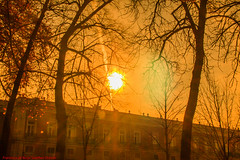 ARANJUEZ-Madrid (FRANCISCO DE BORJA SÁNCHEZ OSSORIO) Tags: sunset sun love light luz life lovely amor arrow autumn otoño instant instante invierno winter passion photo pasión primavera spring summer shot streetphoto street photostreet color colour composition composición colourtemperature timeexposure tiempodeexposición temperaturadecolor bokeh beauty belleza fog foggy españa exposure enfoque encuadre exposicion madrid moment flechazo focus focuspoint foco framing detalles detalle detail details desenfoque disparo delicado divertido delicate dof depthoffield aranjuez realessitios 35mm 50mm objetivonormal